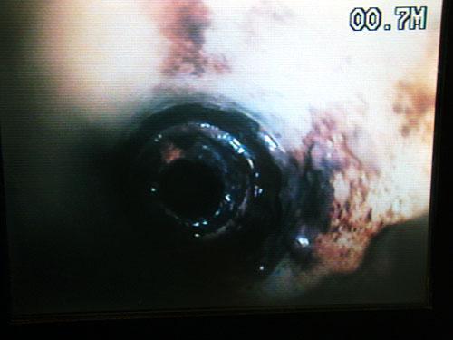 排水管内視鏡調査